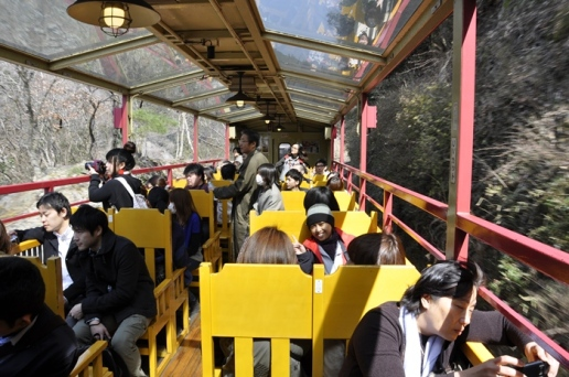 Gerbong Terbuka Sagano Scenic Railway