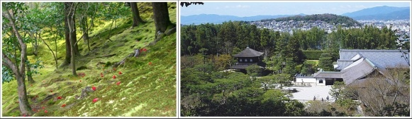 Moss Garden dan Pemandangan Dari Atas Bukit Ginkakuji