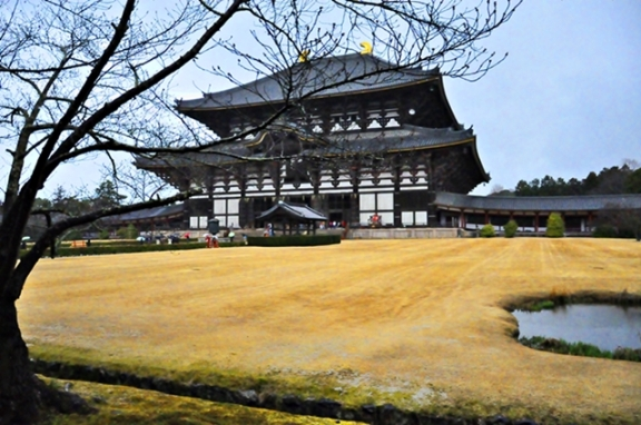Bagian Depan Daibutsu Hall