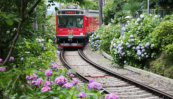 Hakone Tozan Railway (Photo By : japanguide.com)