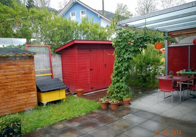 Kandang kelinci di halaman belakang rumah