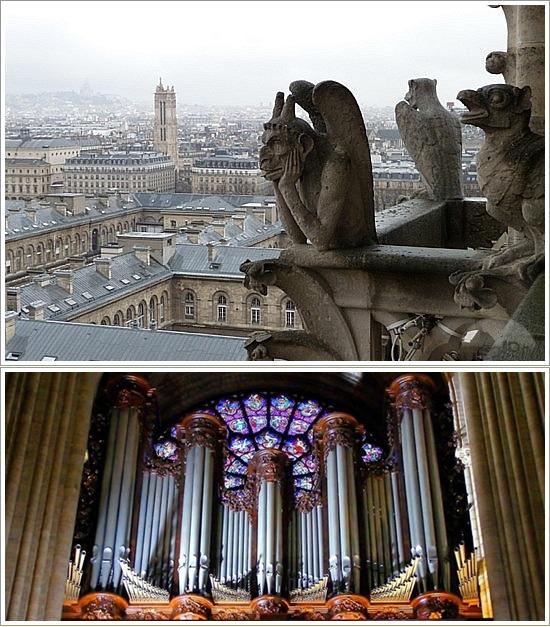 Salah satu patung Gargoyles di menara Notre Dame (atas), Organ Notre Dame (bawah). Photo by : pinterest.com