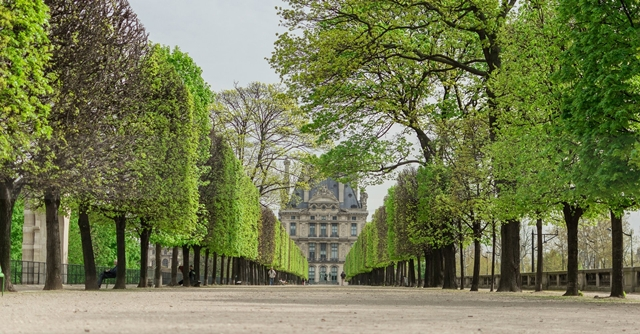 Salah satu sudut Jardin des Tuileries